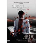 Fabsalseros: Cuban Salsa for Beginners vol 1 */***